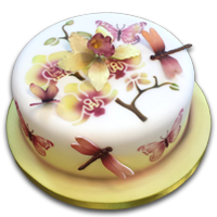 Cake & Sugarcraft Tutorials