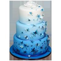 Moody Blues Airbrushed Cake Tutorial By Lisa Munro
