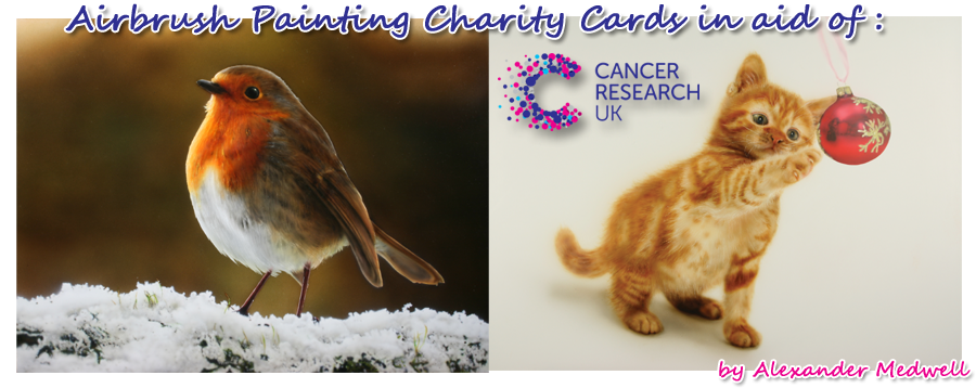 Charity Christmas Cards in aid of Cancer Research UK